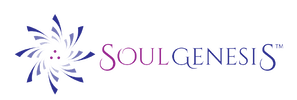 Soul Genesis trains and certifies you with the tools for helping others connect with life energy.